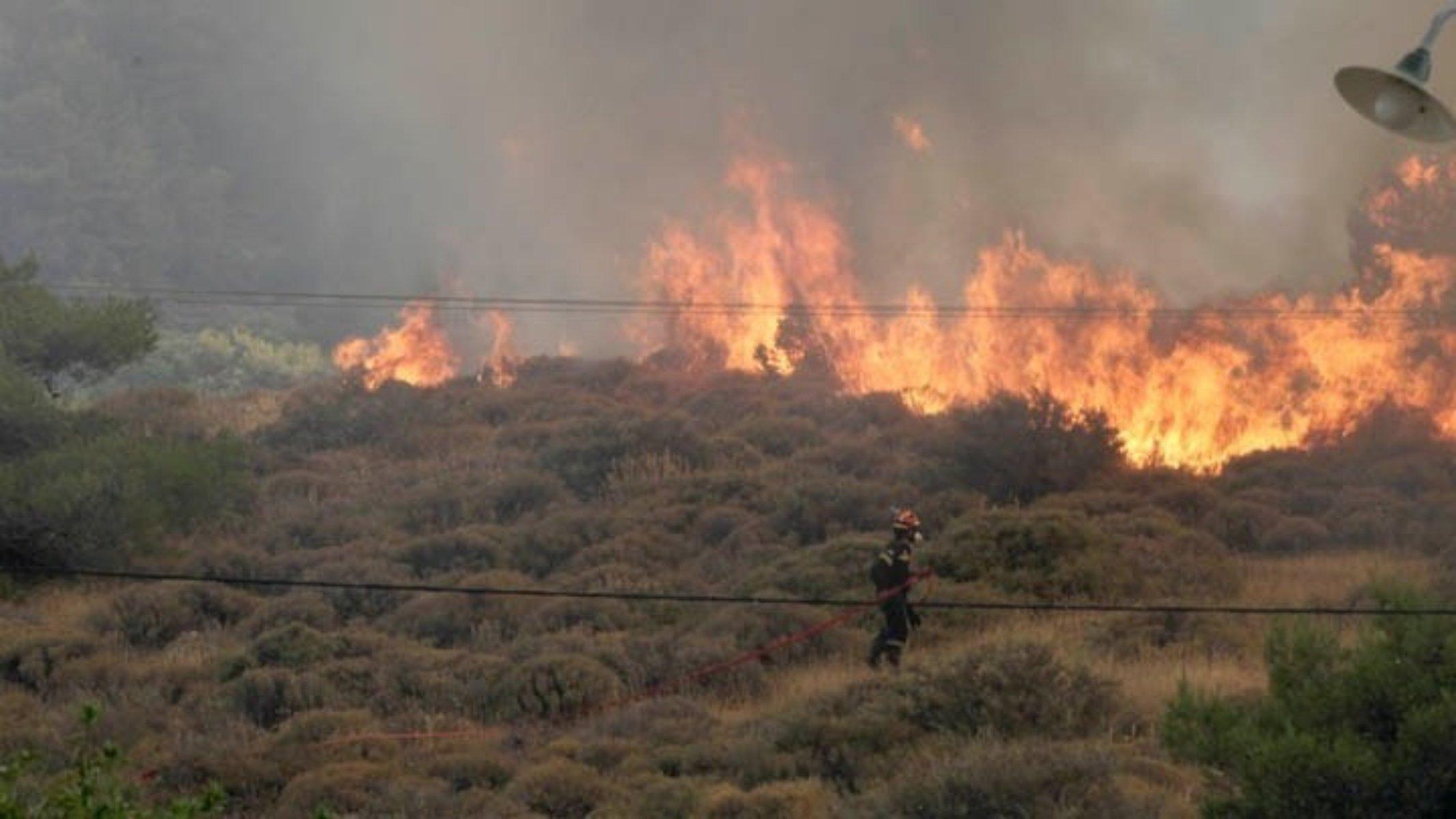 Φωτιά στη Δροσιά Αχαΐας